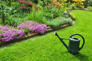 Conseils pour aménager un jardin carré ou en longueur